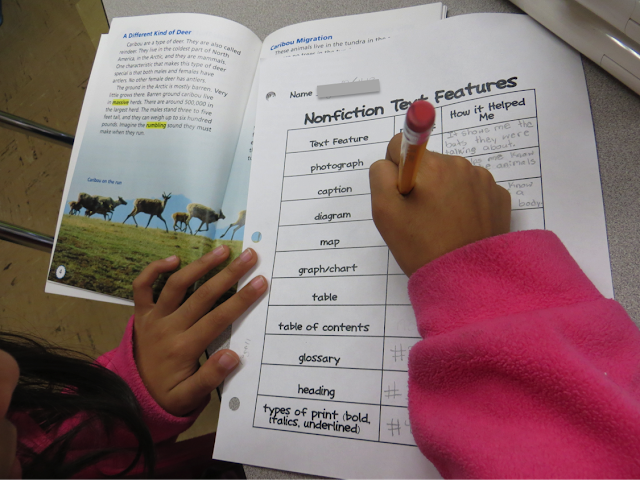 Looking for activities for teaching nonfiction text features? Here